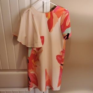 Crosby by Mollie Burch Dress
